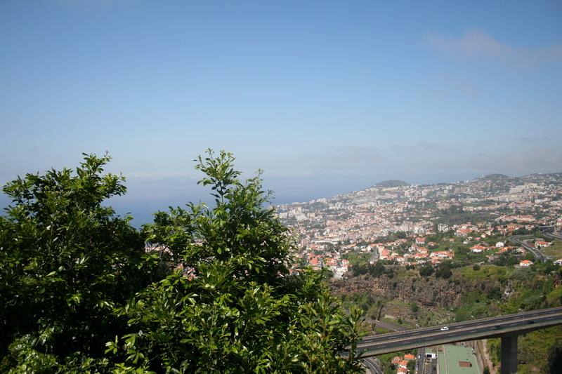 Arke-Madeira-083
