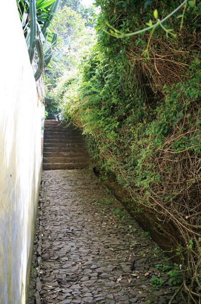 Arke-Madeira-107