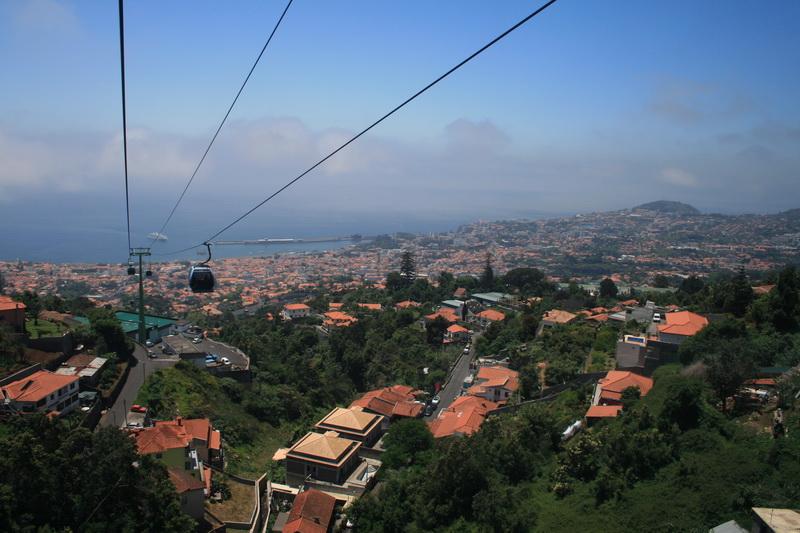 Arke-Madeira-150