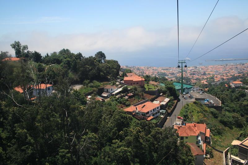 Arke-Madeira-152