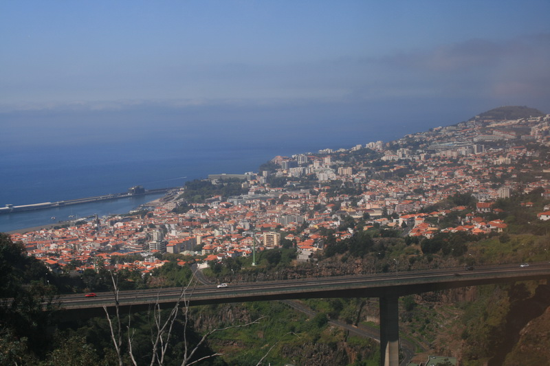 Arke-Madeira-203