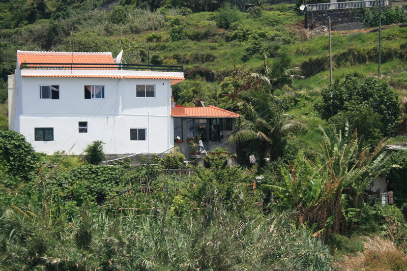 Arke-Madeira-303