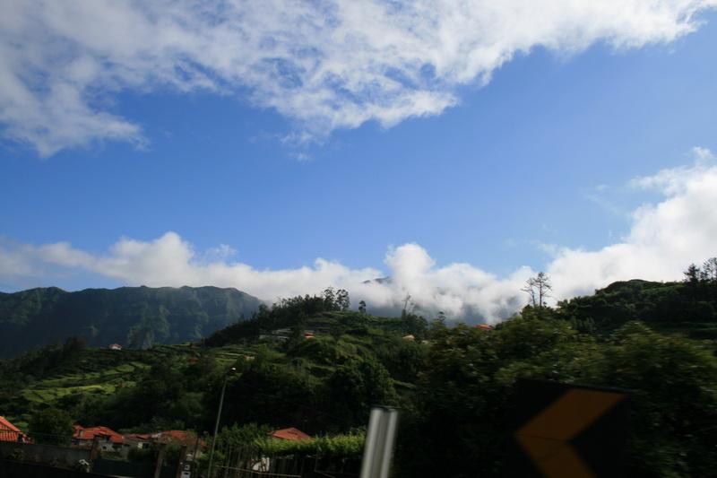 Arke-Madeira-324