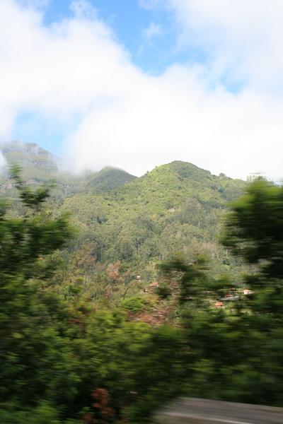 Arke-Madeira-331