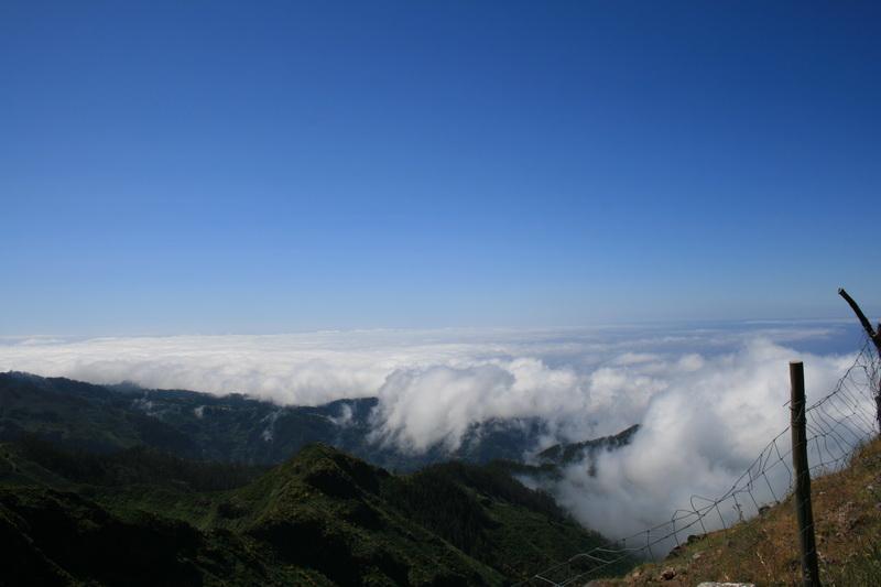 Arke-Madeira-342