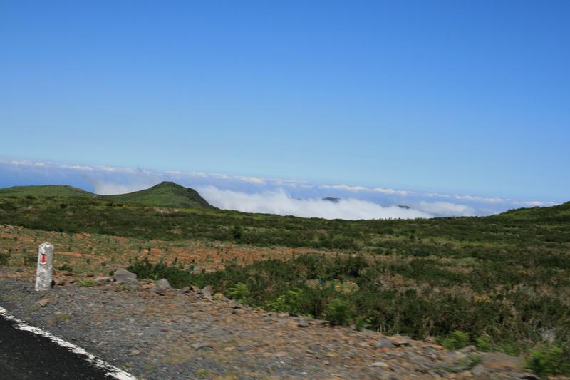 Arke-Madeira-348