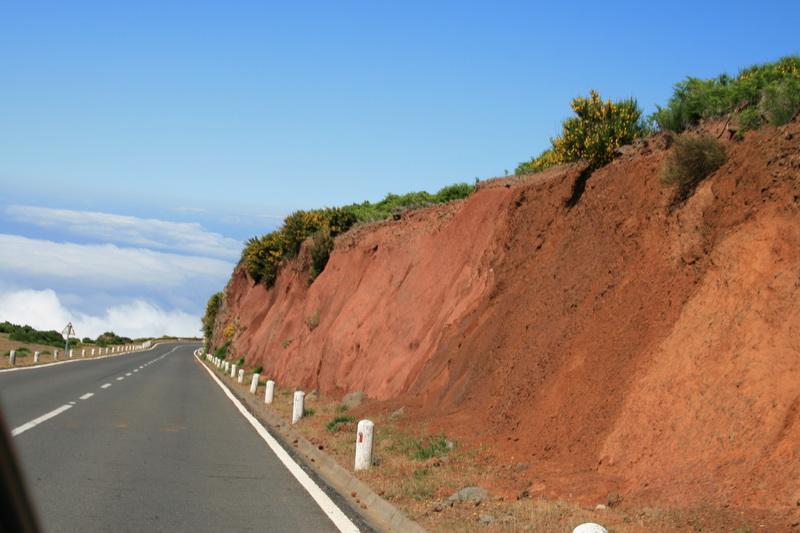 Arke-Madeira-355