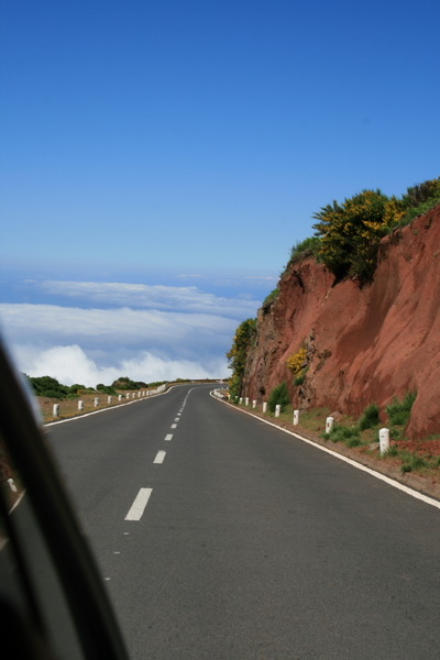 Arke-Madeira-356