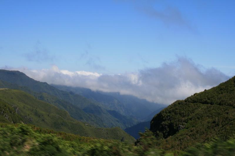Arke-Madeira-358