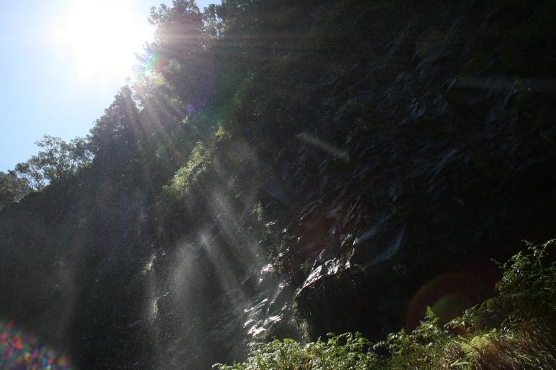 Arke-Madeira-367
