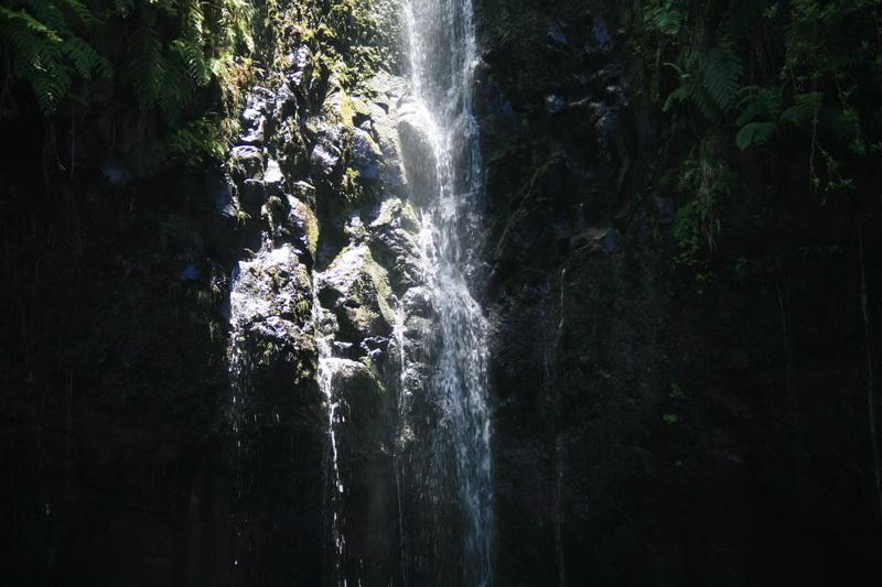 Arke-Madeira-394