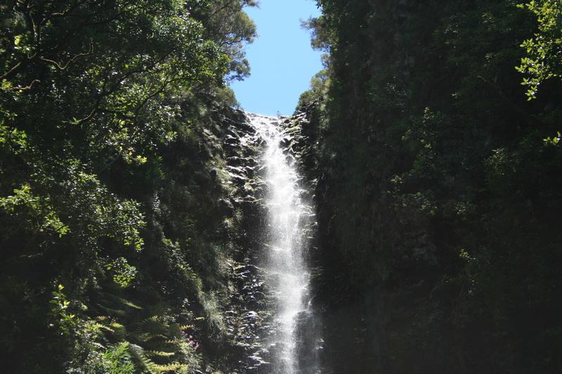 Arke-Madeira-407