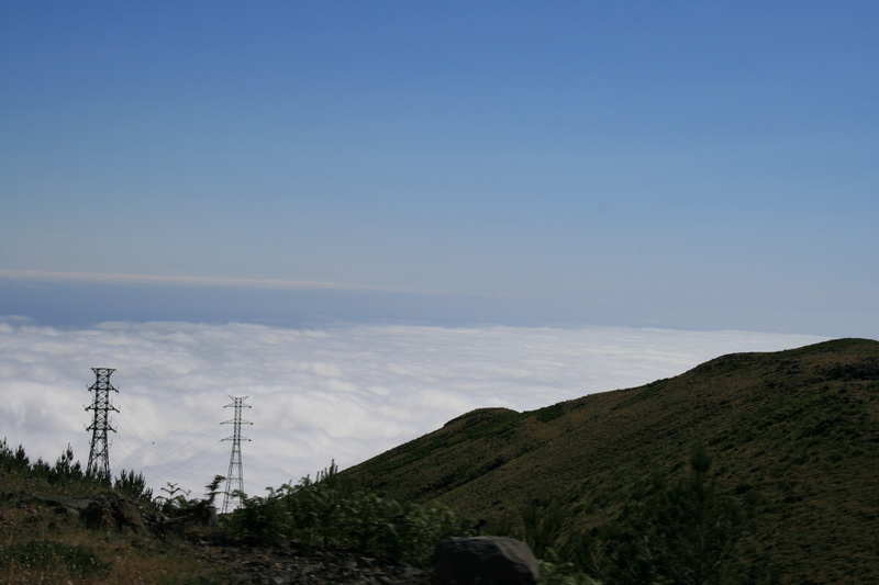Arke-Madeira-420