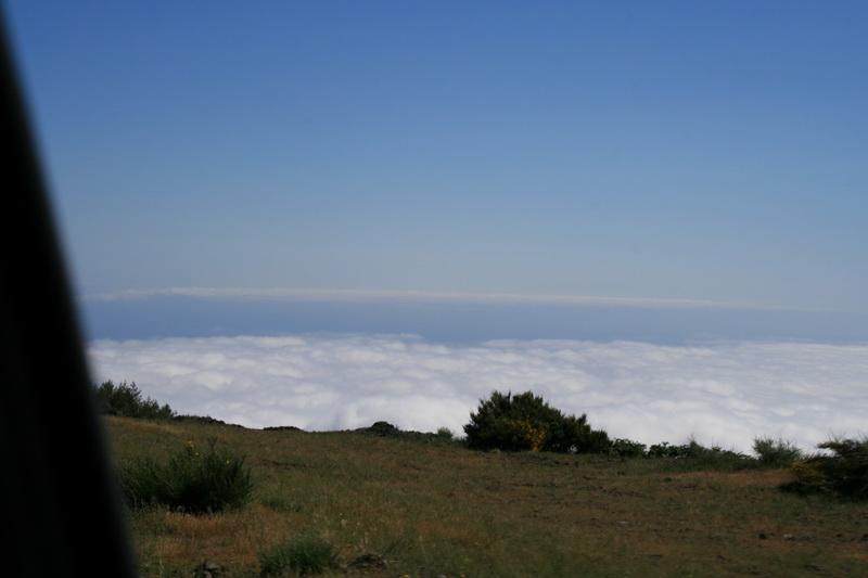 Arke-Madeira-422