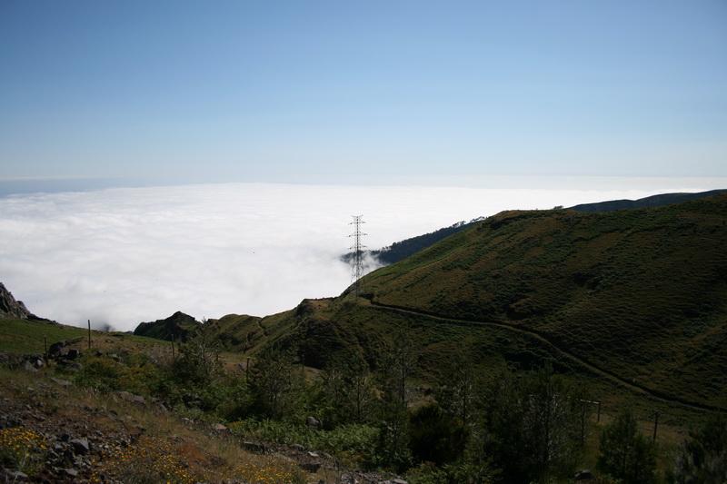 Arke-Madeira-425