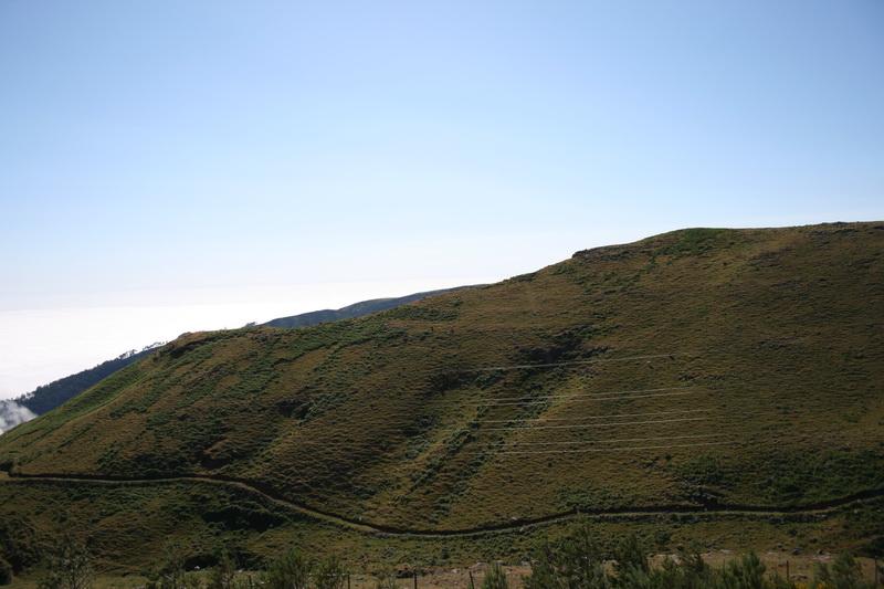 Arke-Madeira-430