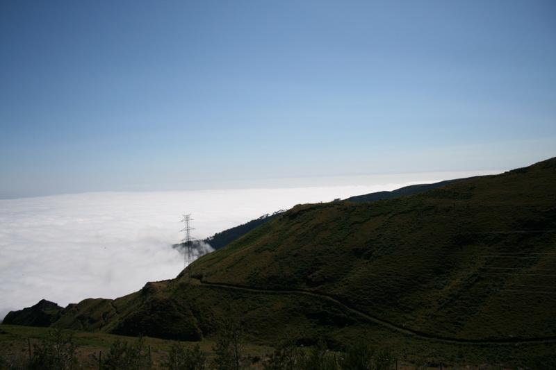 Arke-Madeira-431