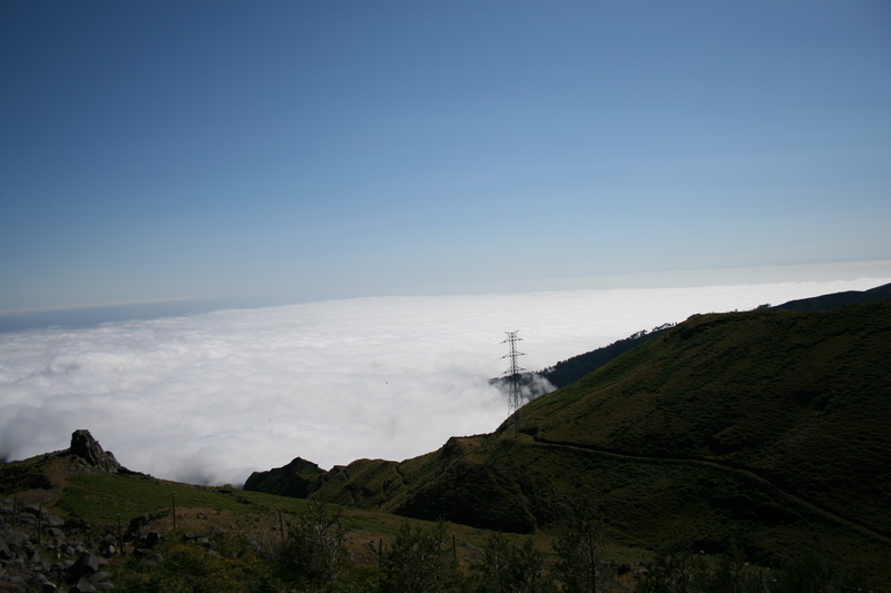 Arke-Madeira-432