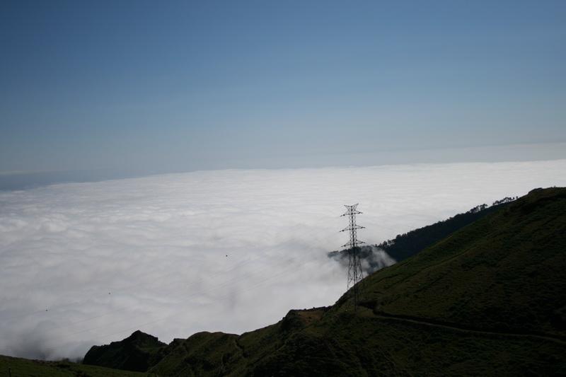 Arke-Madeira-433