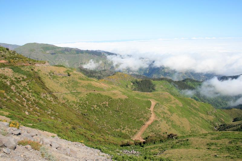Arke-Madeira-435