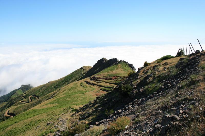 Arke-Madeira-438
