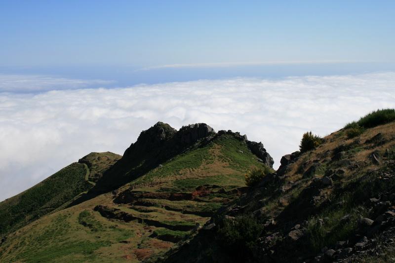 Arke-Madeira-439