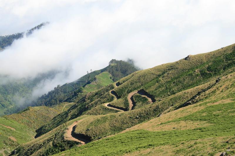 Arke-Madeira-445