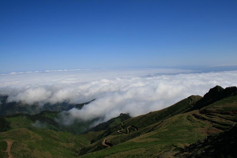 Arke-Madeira-447