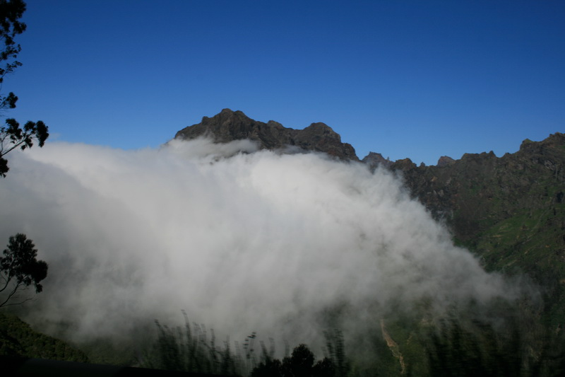 Arke-Madeira-462