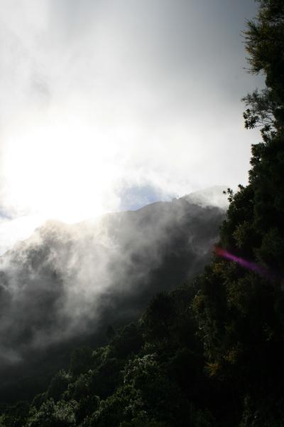 Arke-Madeira-472