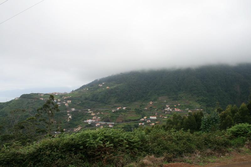 Arke-Madeira-482