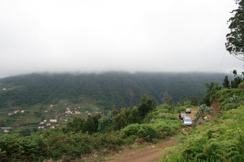 Arke-Madeira-483