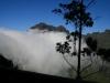 Arke-Madeira-463