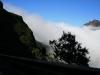 Arke-Madeira-465